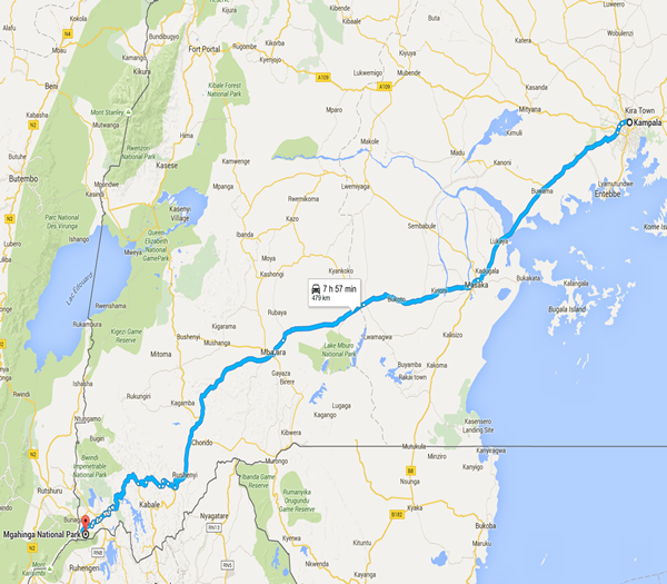 4 day Mgahinga gorilla tour