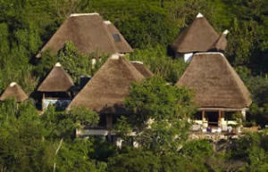 Where to stay in Bwindi