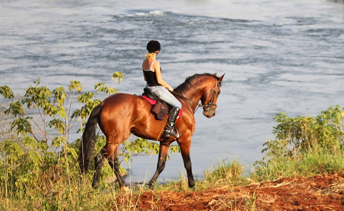 Horseback Riding in Uganda