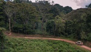 Driving to Bwindi Foest