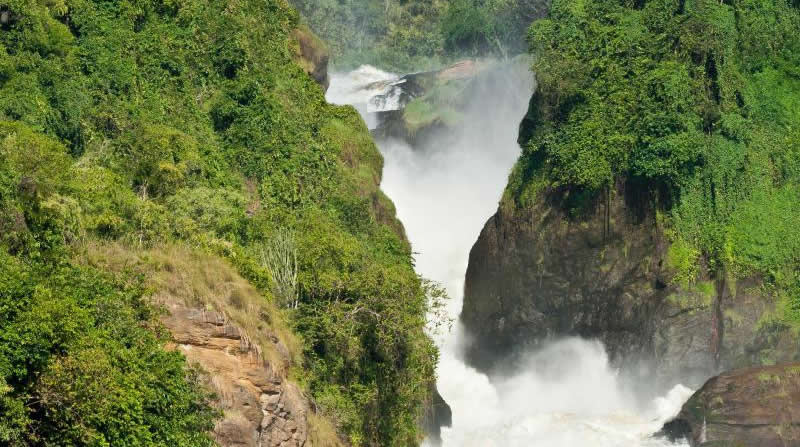 Murchison Falls; Tours & Safaris