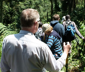 Bwindi Hiking trails