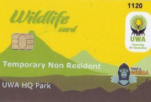 Uganda gorilla permits