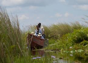 Where to see shoebill stork in Uganda