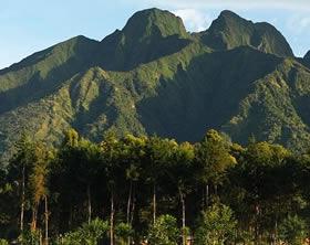Volcano climbing in Volcanoes park