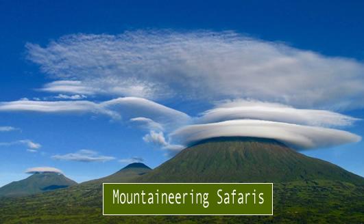 Uganda-hiking-safaris